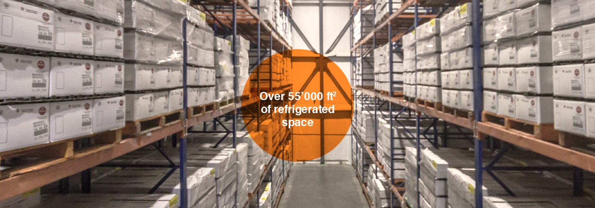 Over 55'000 ft2 of Refrigerated Space